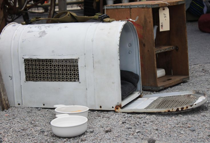 Special delivery! Mailbox turned pet bed, as seen on Flea Market Flip. Check out the latest flips here >> http://www.greatamericancountry.com/shows/flea-market-flip?soc=pinterest