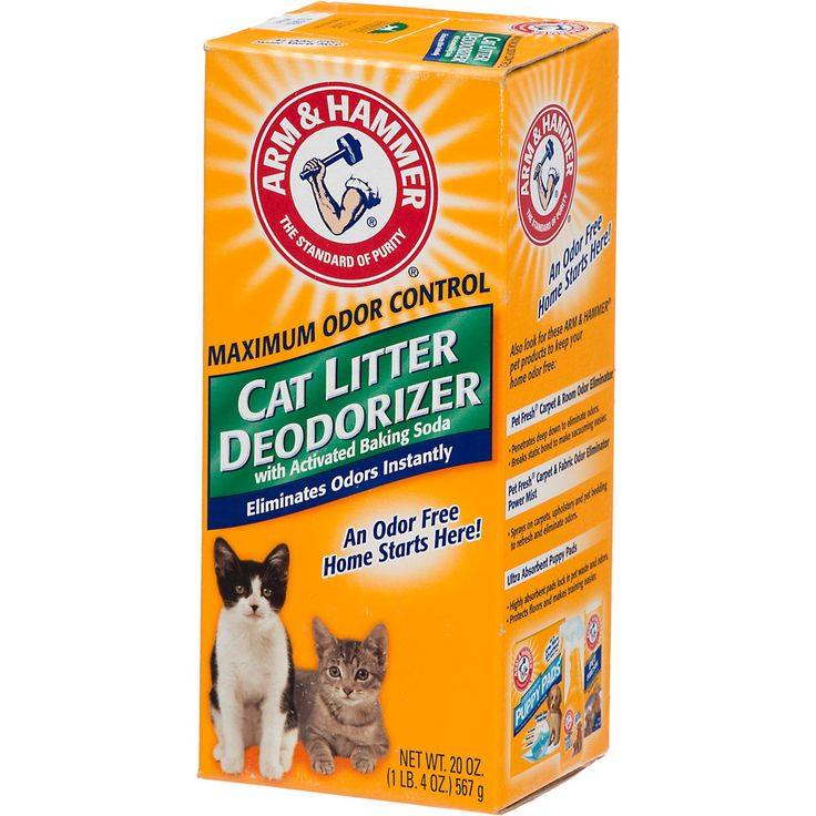 Best Cat Litter Deodorizer