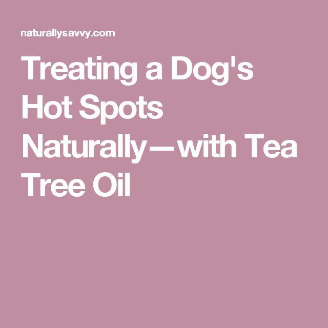 Oil Oregano Treat Dogs