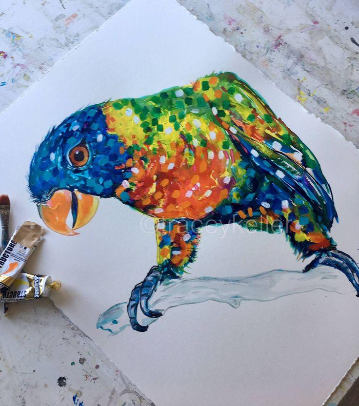 Parrot   Pet Portraits by Tracey Keller