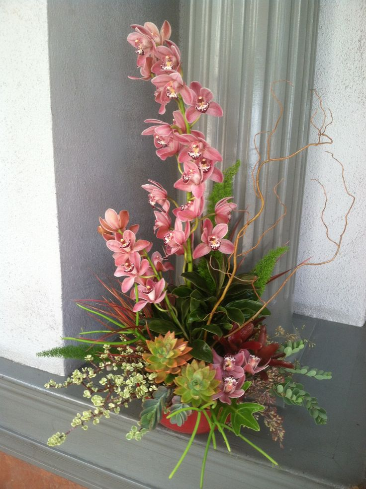 Towering cymbidiums stand out among succulents and