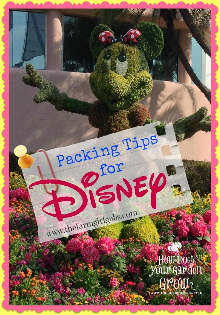 Traveling to Walt Disney World? Practically Perfect Disney Packing Tips for your next Walt Disney World Vacation. Find out what to essentials pack in your in-park backpack. Pin this for you next trip to Walt Disney World!