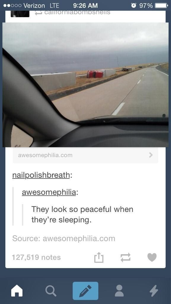 Shhhhh… they're sleeping: | 32 Of The Greatest Things That Have Ever Happened On Tumblr
