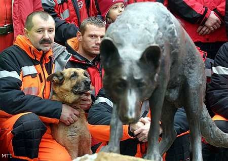 Paws (1994-2006), the German Shepherd has worked in a number of sorties Miskolc Spider rescue group saved a life disaster site, he discovered the dead bodies. International fame during an earthquake in Turkey, where several days after the disaster, a young girl found alive under the rubble.