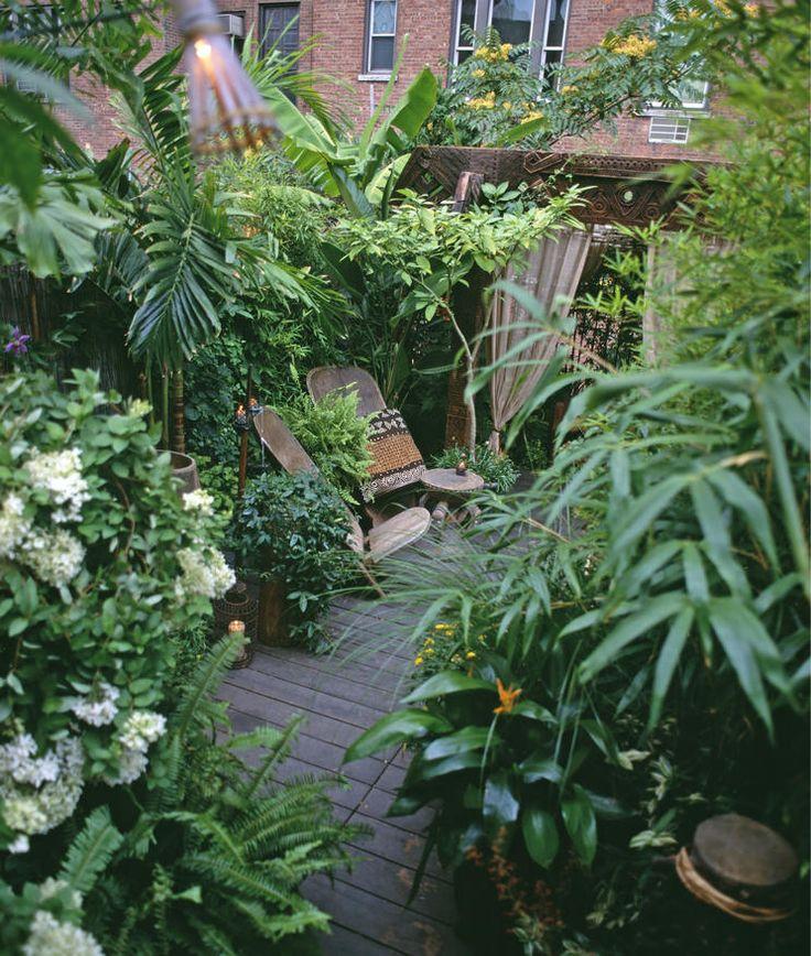 Pin Von Kathrin Wagner Auf Pflanzen: Gartenideen Mit Tropen-Flair