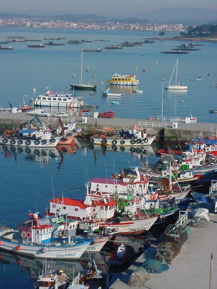 Twitter / Turismo_Grove: El puerto pesquero de O Grove. ...