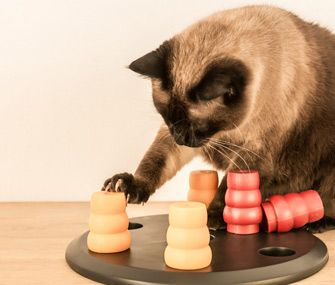 Not sure about food puzzles? Our veterinarian says that the payoff for your pet is tremendous and well worth any extra work.