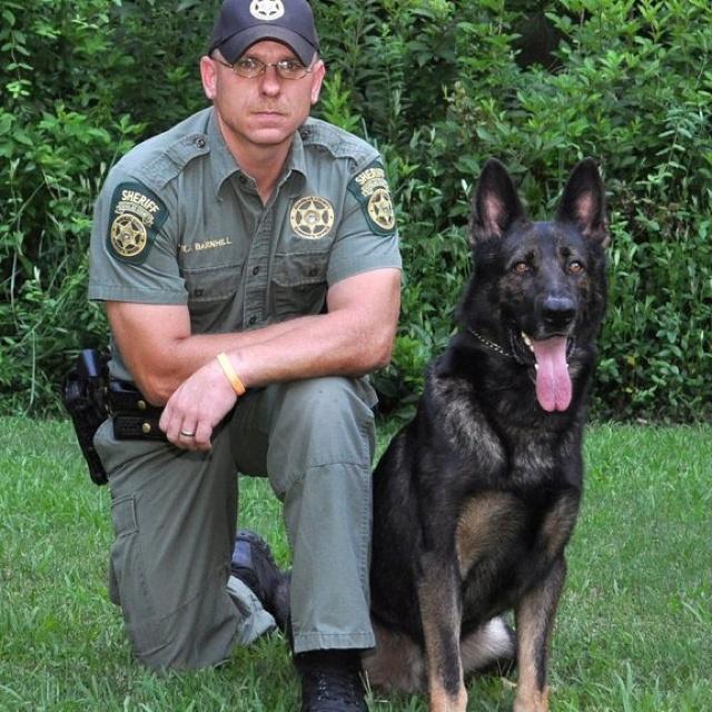 Service Dog Training Cincinnati Ohio