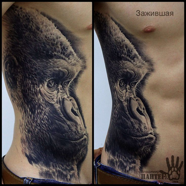 Владимир ПАНТЕРА Королев #татуировка #тату #студия #stattooya #волгоград…