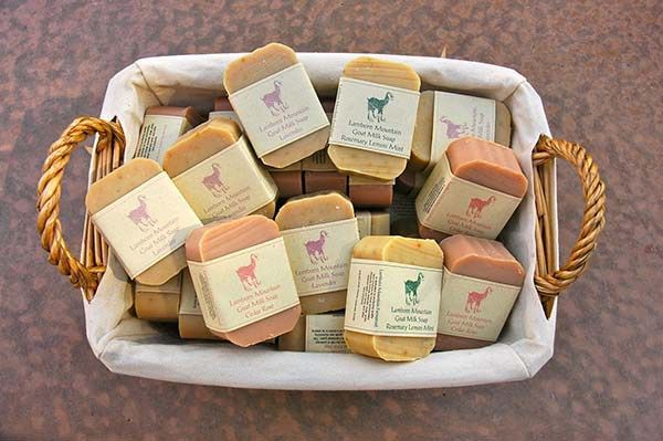 5 Goat Milk Soap Recipes: Learn How to Make a Healthy Goat Milk Soap