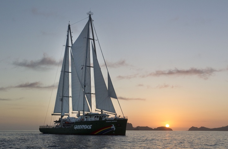 The new Rainbow Warrior at dawn in Matauri Bay - the final resting place of the original Rainbow Warrior (C) GREENPEACE / Marple