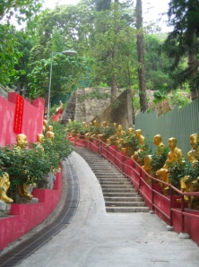 10000 Buddhas Monastery in Hong Kong. Another place to visit in future