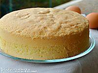 Torta di mele e crema pasticcera senza burro e olio soffice semplice e tanto golosa, senza grassi quindi anche leggera non contiene ne burro e ne olio