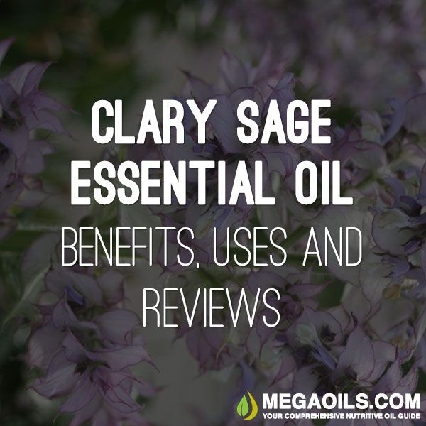 Clary Sage Essential Oil Benefits, Uses and Reviews