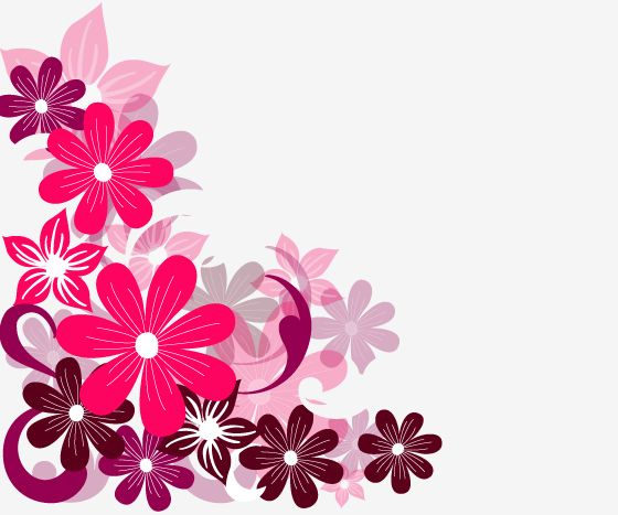 Pink Flower Background | Pink Flowers Free Corel Draw Vectors