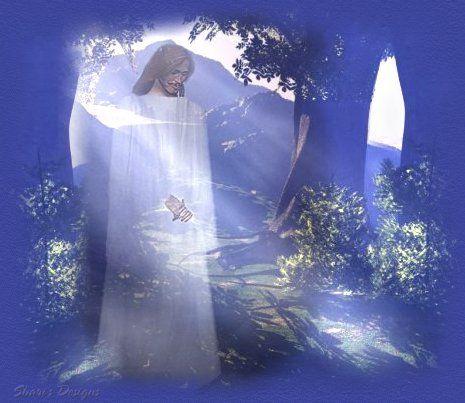 Seeing the Light of God   god s shining light each morning we awake to god