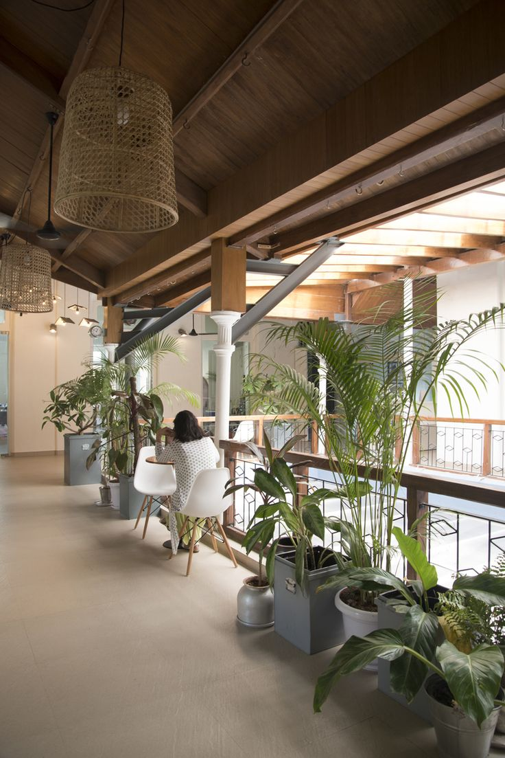 Plants and wicker at Mumbai coworking space Ministry of New — LOVER