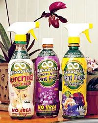 How to Grow Orchids, Growing Orchids, Orchid, Orchids, Orchid Care: Gardener's Supply