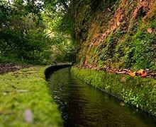 Wandelroutes Madeira