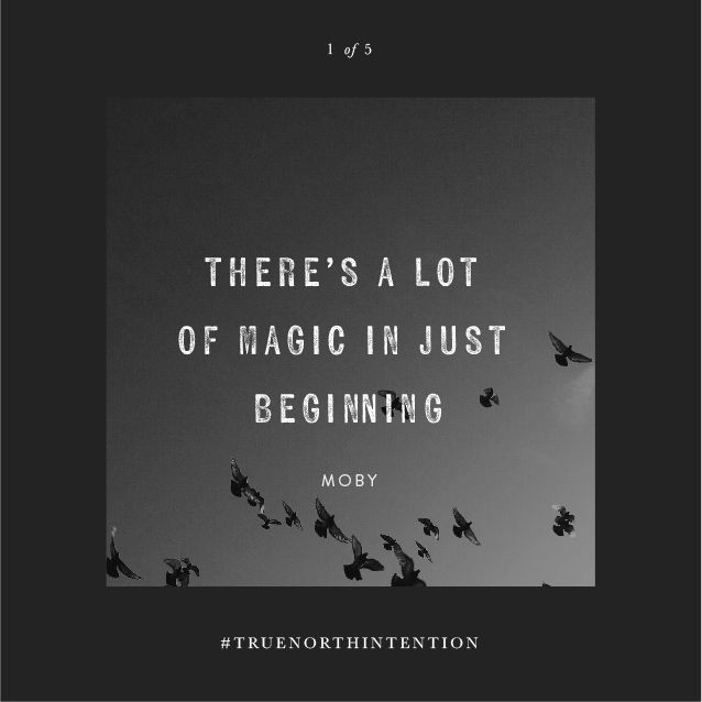 What will you manifest in 2016? It doesn't have to be tangible, and it doesn't have to make sense to anyone else. Call it your #TrueNorthIntention. Inspire others, and share your New Year intention on social media! Tag #TrueNorthIntention >> http://wlfe.st/1YokSfQ