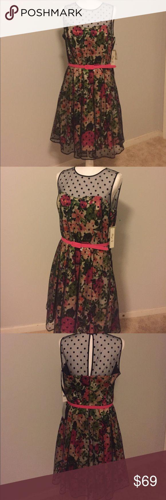 Eliza J Missy Dress NWT Size 14 NWT Eliza J Dresses Midi