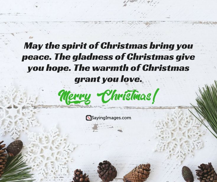 Best Christmas Cards, Messages, Quotes, Wishes, Images #sayingimages #christmasquotes #christmascards #christmaswishes #christmasimages #merrychristmas #christmasday