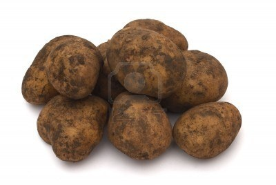 GROUP OF DIRTY RAW POTATOES STOCK PHOTO