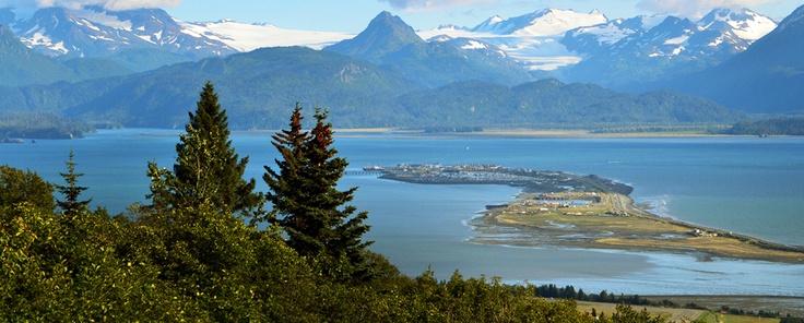 252 Best Homer Alaska Images On Pinterest Homer Alaska