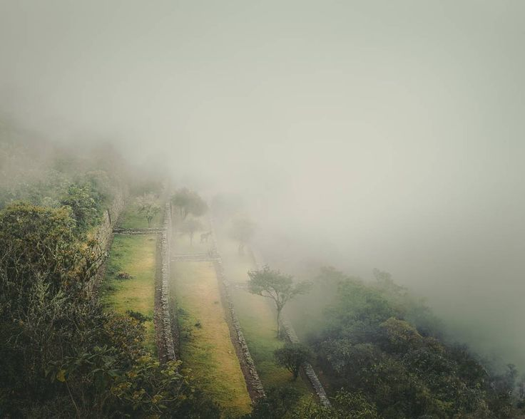 The lost inca ruins of Choquequirao. A really mystic scenery while our visit on this day.  . . . #choquequirao #fog #hiking #hikingculture #hikingworldwide #peru #southamerica #discoversouthamerica #travel #travelphotography #travelgram #passionpassport #neverstopexploring #earthpix #thegreatoutdoors #nature #lifeofadventure #mothernature #landscape #landscapephotography #letsgosomewhere #picoftheday #wanderlust #ourplanetdaily #stayandwander #backpackersjournal #wildernessculture…