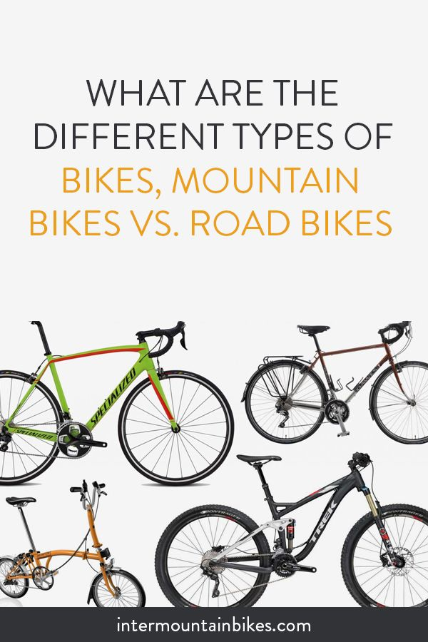 Despite The Wide Range Of Bikes Available There Are Two Most