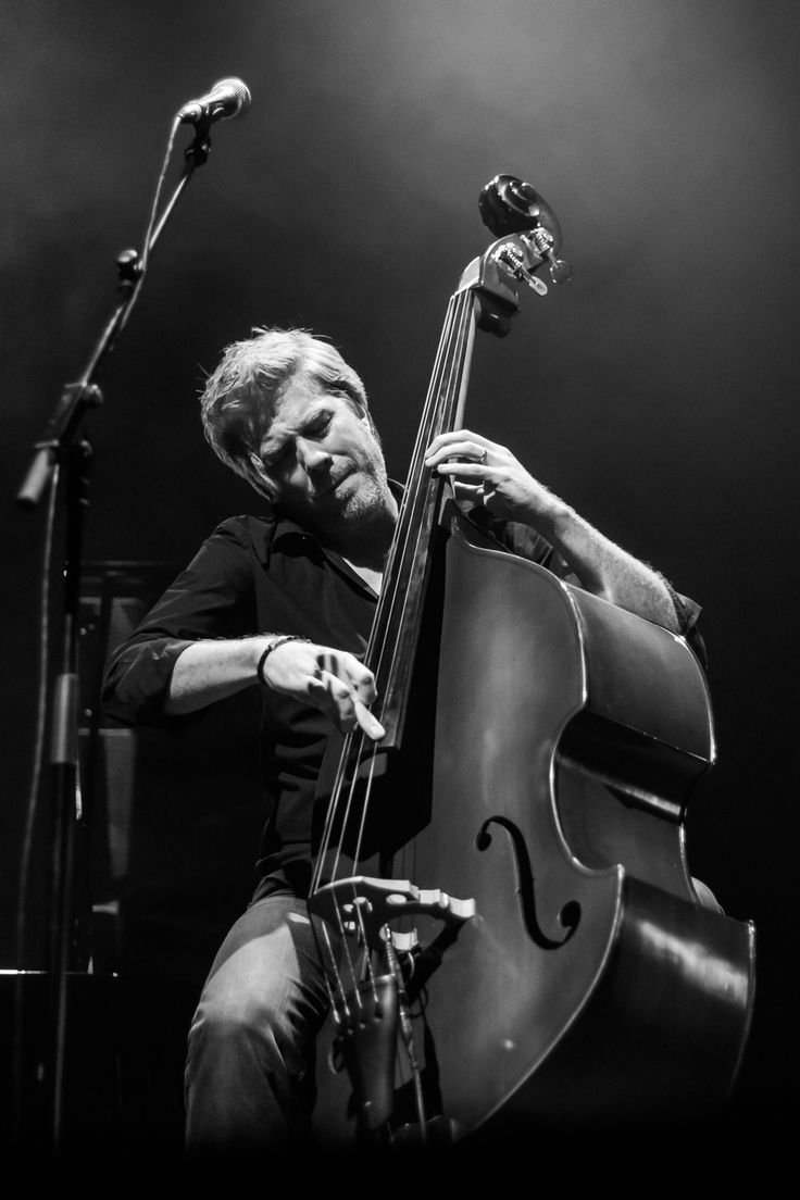 Hasn't everybody dreamed of immortalizing the concerts of their favorite artists? Here some suggestions by Clément Chambaud: http://bit.ly/1Rn8dX4 #concertphotography #music #photo