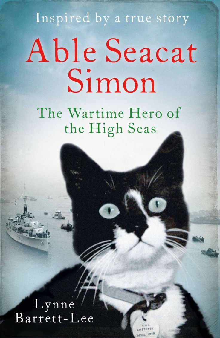 Book Review: Able Seacat Simon