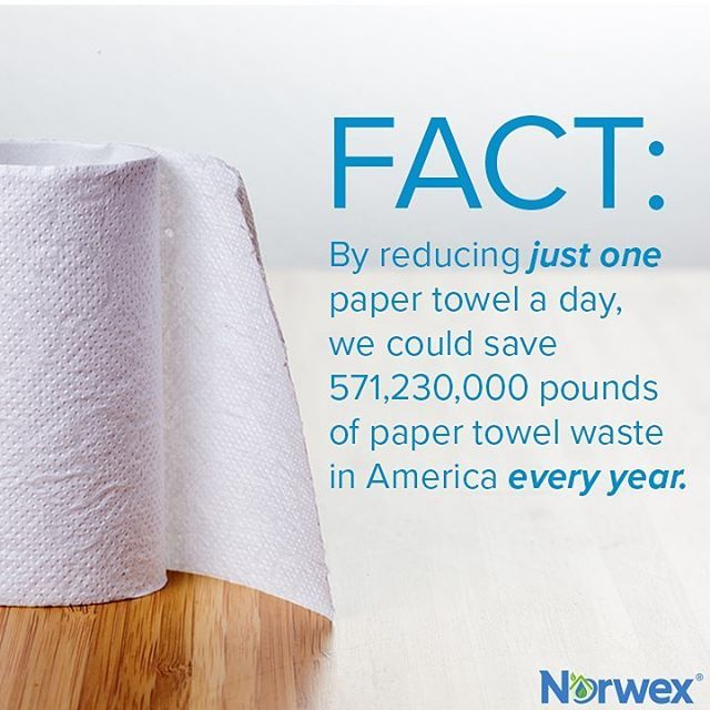 13 billion pounds. That's how much paper towels we're using in the U.S. in just 1 year! Cut back on your usage of paper towels with these ideas!