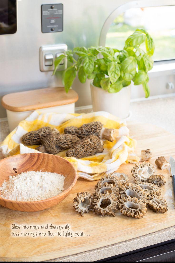 19 best images about morel mushrooms on pinterest trees for Morel mushroom recipes food network
