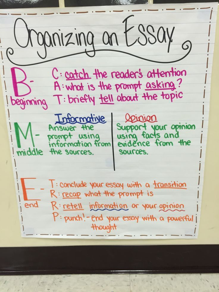 Organizing An Essay Anchor Chart  Fsa Styled Writing For