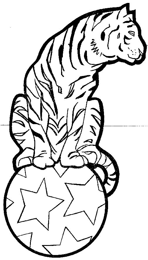tiger coloring pages for preschoolers - photo#27