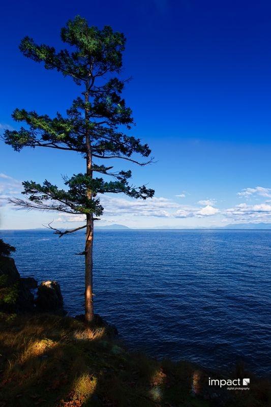 Neck Point Nanaimo