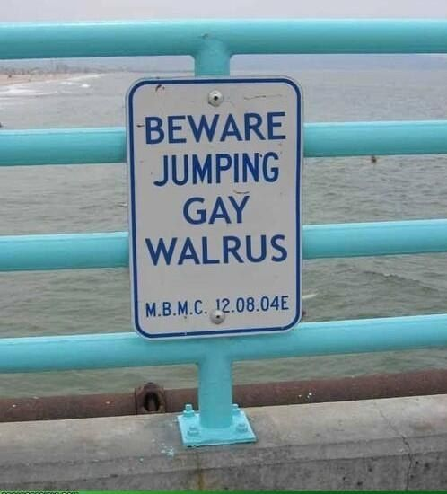 Best Funny Images On Pinterest - 34 ridiculous signs will make question humanity