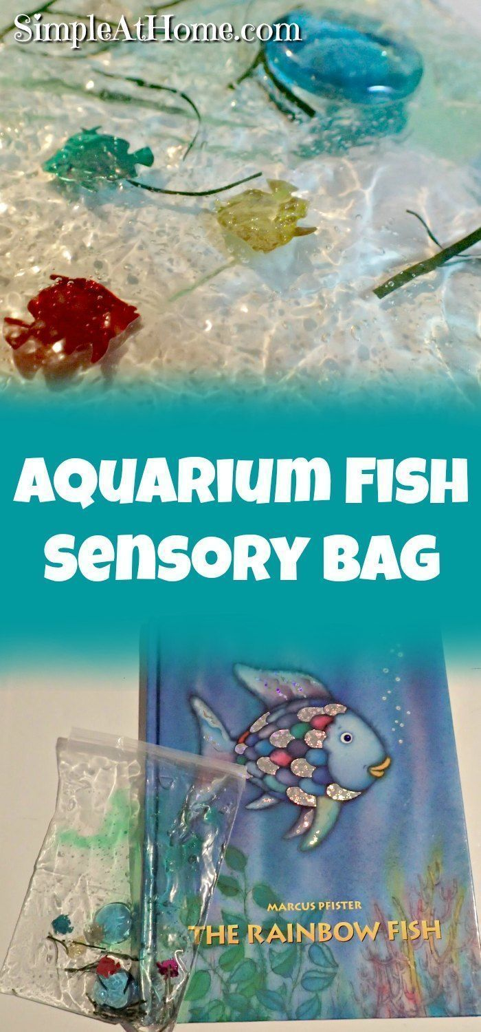 20 best ideas about rainbow fish activities on pinterest for Best fishing books
