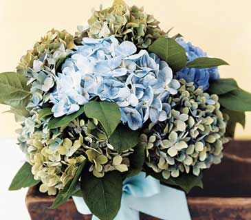 How To Dry Your Wedding Bouquet Average Costspreserving