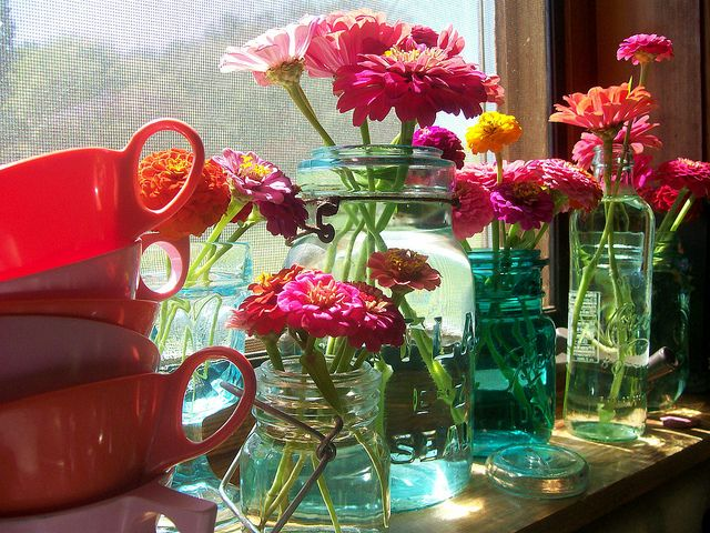 Zinnias: Pretty Beautiful, Good Things, Floral Beautiful, Things Happen, Glasses Jars, Gardens Dreams, Mason Jars, Flower, Beautiful Things