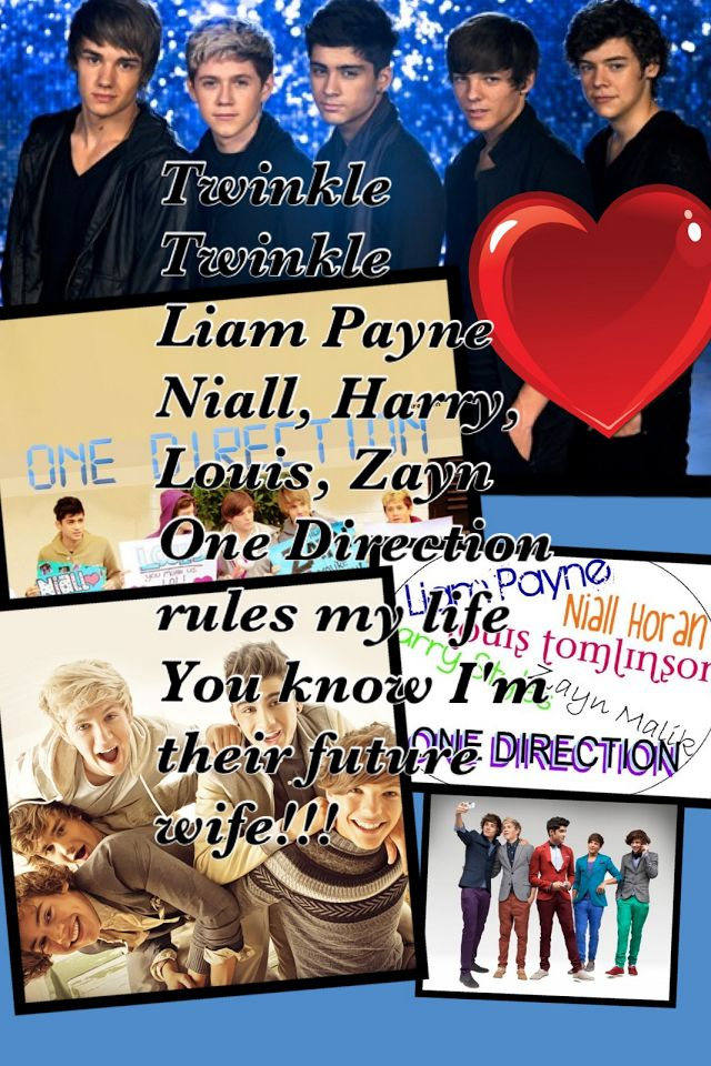 One direction zayn malik louis tomlsin nial torane harry styles liam payne