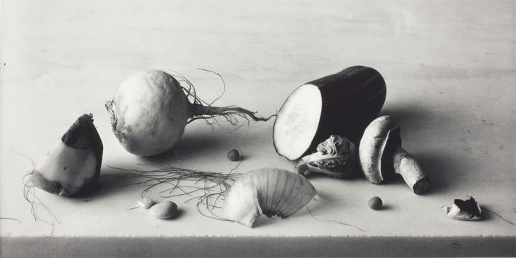 Irving Penn - Still Life with with Onion Skin, New York | The Art Institute of Chicago