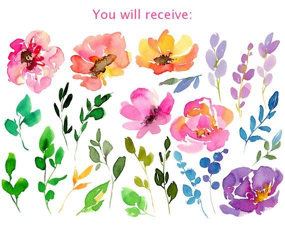 Bright Watercolor Summer Flowers Leaves Branches Aquarelle Digital