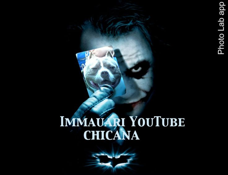 Immauari YouTube #bully tattoo #nature #animals lover #abkc #bullylove #bestfriend #cani #chien #viaggio #top
