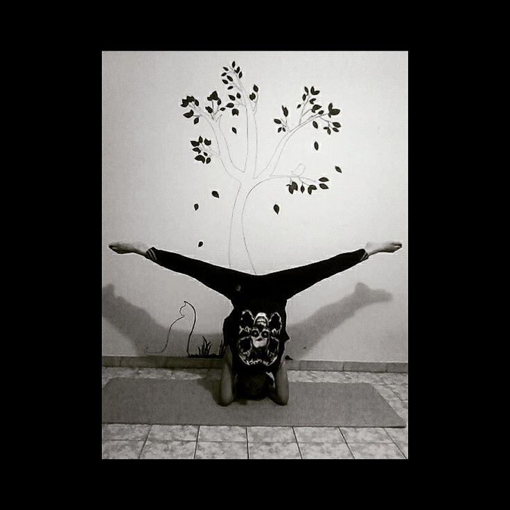 #asana #handstand  #flexibility #yoga #yogi #yogagirl #yogavenezuela
