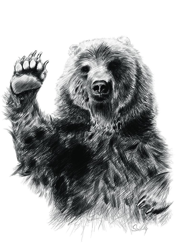 Friendly Bear Sketch #bear #sketch #funny #art #design #wacom #grafictablet #digitalsketch #digital #black #friendly #passion #nostalgy #photoshop #style #sketching #beltonaru #szekelydaniel #darko #alwayscreative #tryingtosurvive http://szekelydaniel.blogspot.ro/2016/09/friendly-bear-sketch.html https://www.facebook.com/alwayscreative87 https://ello.co/beltonaru