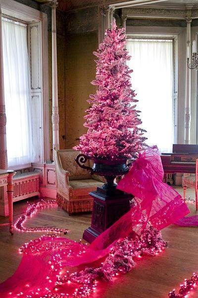 pink tree in urn