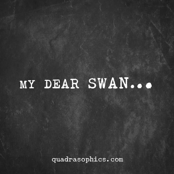 mein lieber schwan