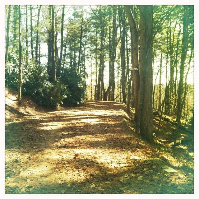 Moses Cone Park, Blowing Rock, NC